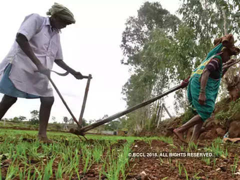 Centre and states should collaborate to beat farm blues