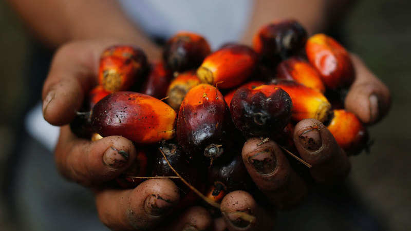 ASEAN: India cuts duty on refined, crude palm oil from Asean