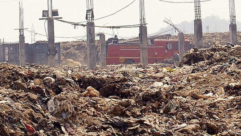 pollution is a consistent demolition of the earth essay