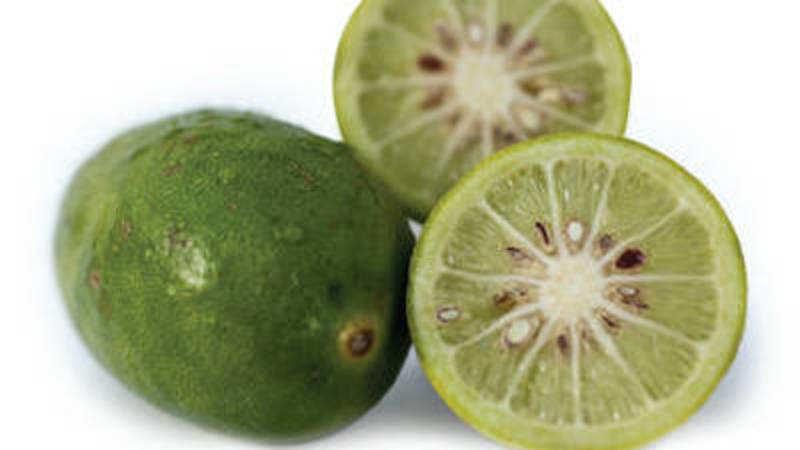 Gondhoraj Lebu: Bengali restaurateurs using aromatic lime in