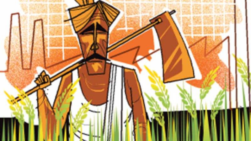 Agricultural ties with Israel helping Indian farmers - The
