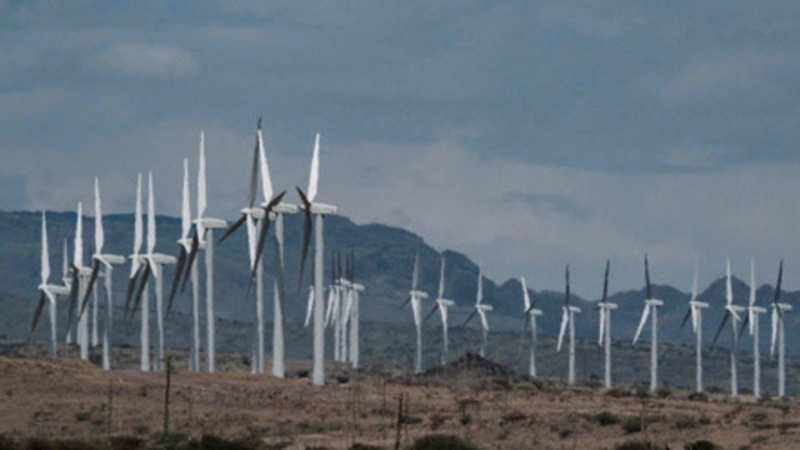 35 developers express interest in Gujarat's offshore wind project