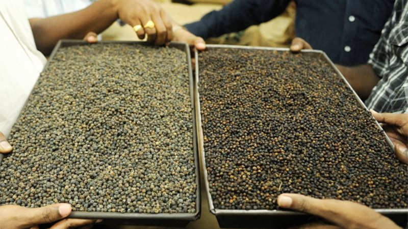 Pepper prices cross Rs 700 a kg in April - The Economic Times