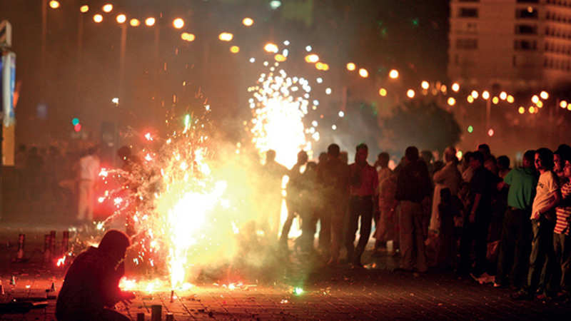 animal behaviour: Why saying no to firecrackers will show that you