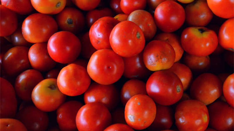 Tomato exports to Pakistan takes a beating with soaring