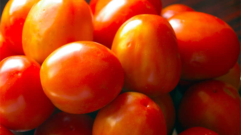 Tomatoes can increase sperm count & boost male fertility