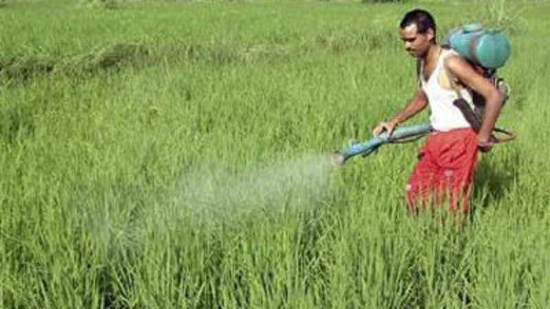 Insecticides India to set up R&D centre with Japan's Otsuka