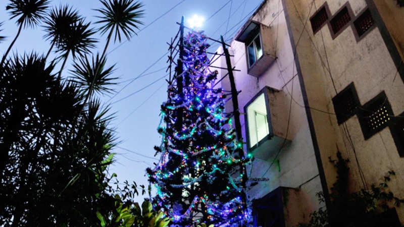 Tall Christmas Tree Decorating Ideas.A 65 Feet Tall Tree Over 10 000 Lights And A Last Wish