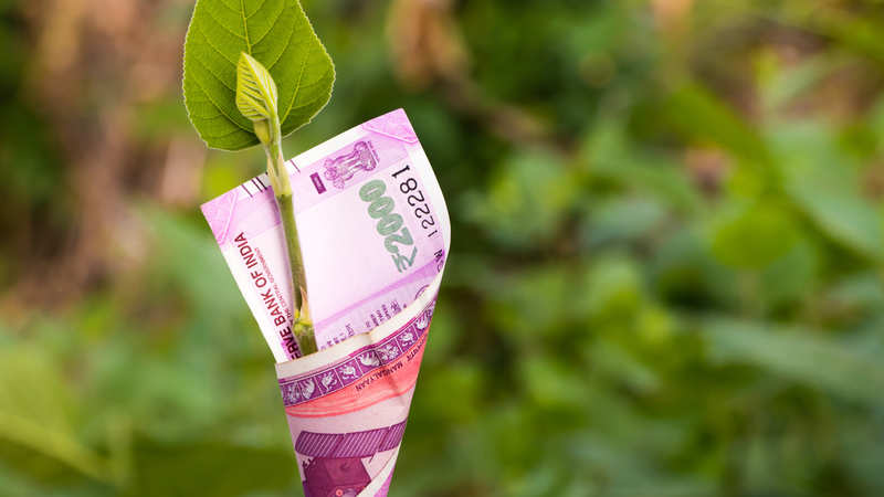 What should I do with my investments in HDFC Equity Fund?