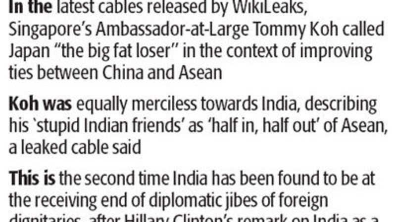 Singapore diplomat calls India 'stupid' - The Economic Times
