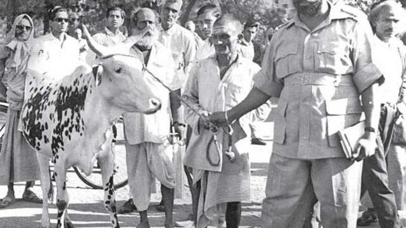 Here's a curious anecdote of Mahatma Gandhi & the killing of