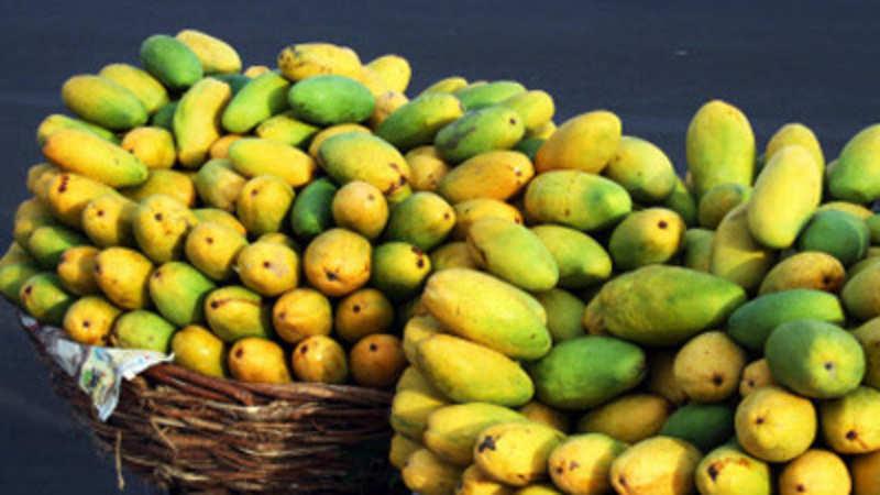 India conveys disagreement to European Union on mango export
