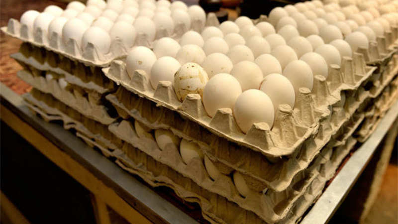 Livestock farmers urge the Centre to take steps to resume egg export