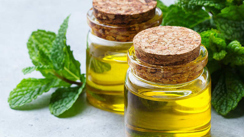 mentha Oil: Agri-commodities manage to keep head high last