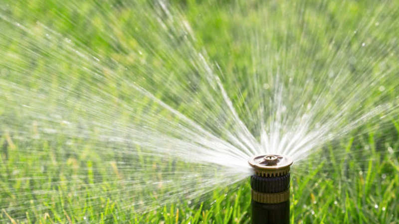 Jain Irrigation wins contract from K'taka govt: Jain Irrigation wins