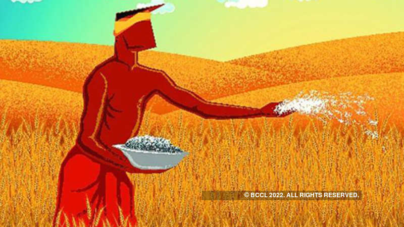 Agriculture exports decline to $33 87 billion in FY17 - The Economic
