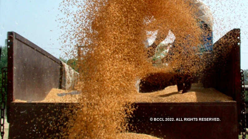 Wheat import duty: Government may raise import duty on wheat