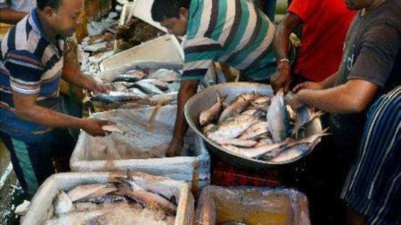 Fish on a click: Bengal's fish market starts home delivery
