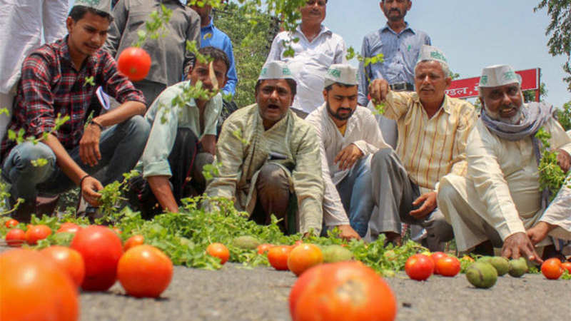 Farmers' strike fails to hit vegetable prices - The Economic
