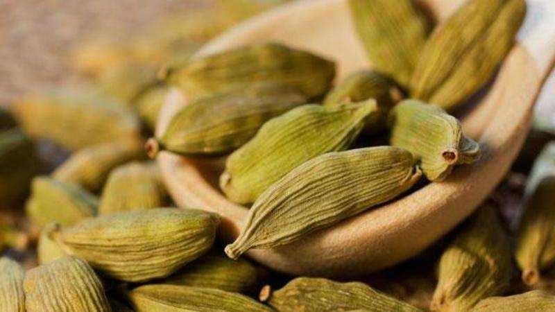 tea: Heavy monsoon rains hit cardamom, tea crops - The