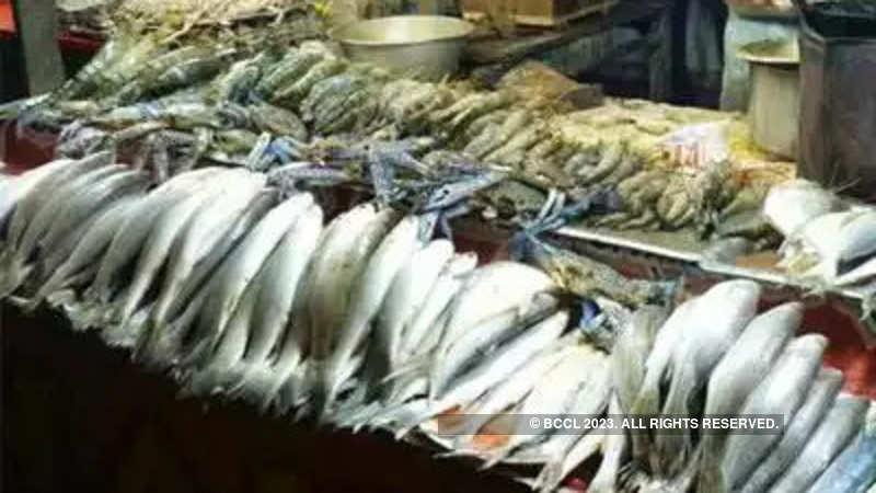 domestic fish production: CMFRI launches Rs 15 crore cage