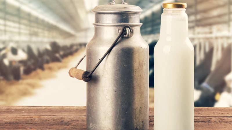 Bengaluru gets health-conscious, switches to organic milk to