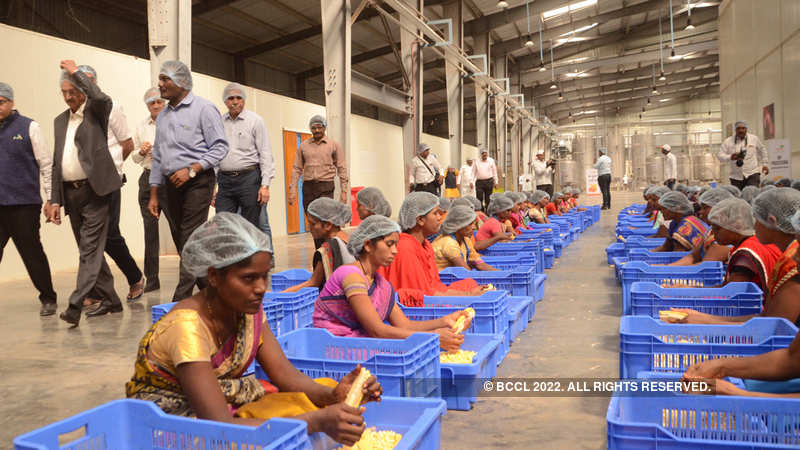 Fourteen mega food parks to become operational this year - The