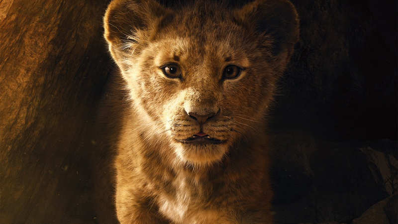 The Lion King: The trailer of Walt Disney's 'The Lion King