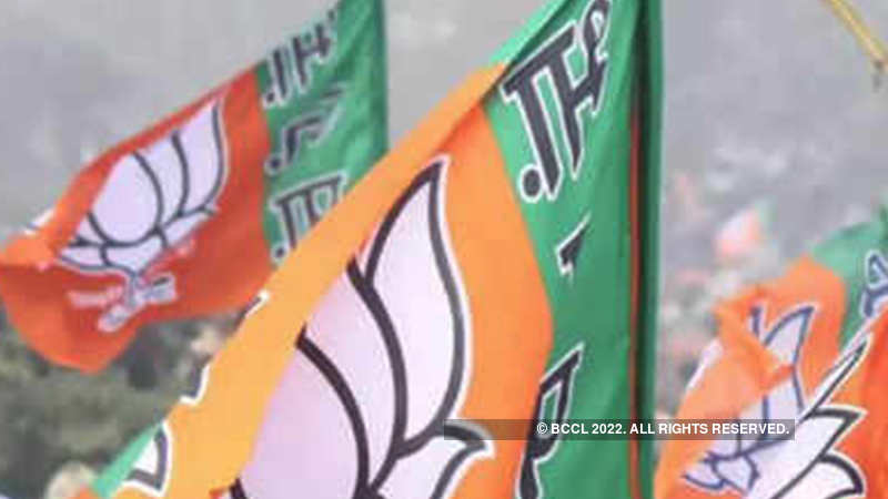 Electoral bonds: Ruling BJP bags 95% of funds - The Economic Times