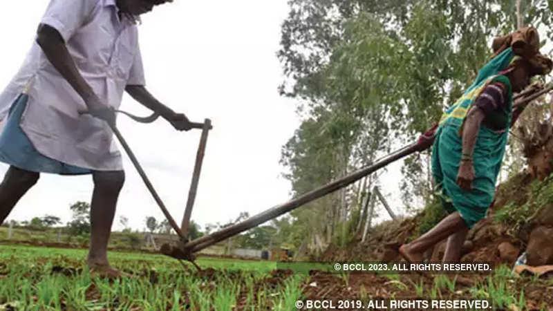Maharashtra Government: Maharashtra farmers to get