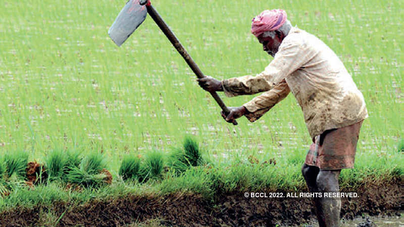 budget 2019: Budget 2019: Government may hike agri credit target to