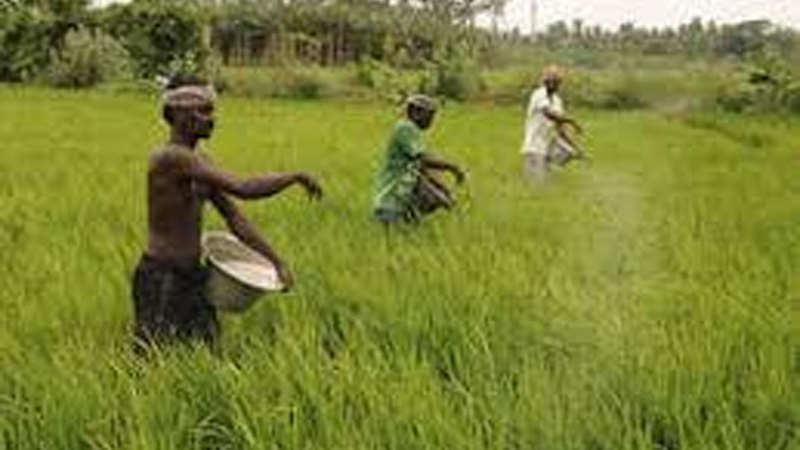 Odisha to implement PM-KISAN