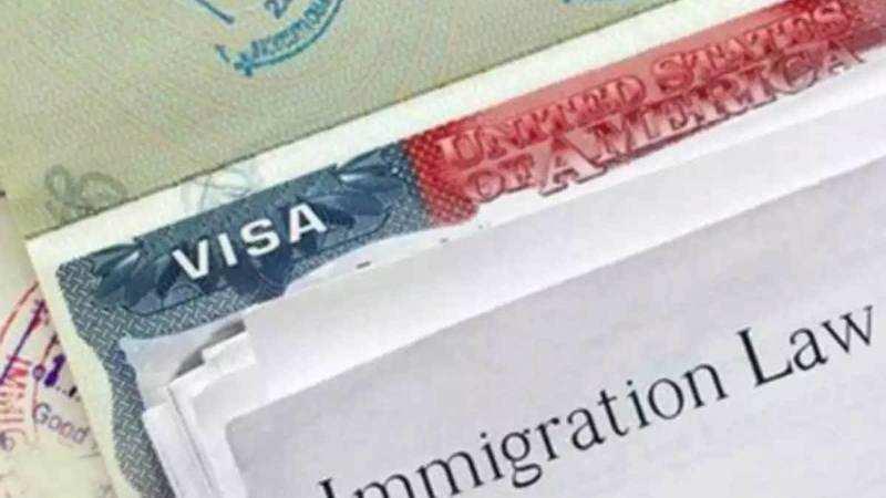 H-1B visa: New U S  rule could disqualify half of visa