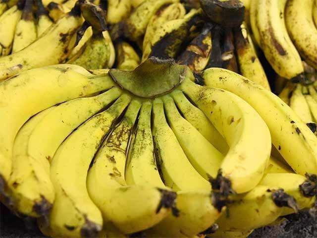 Image result for banana bccl