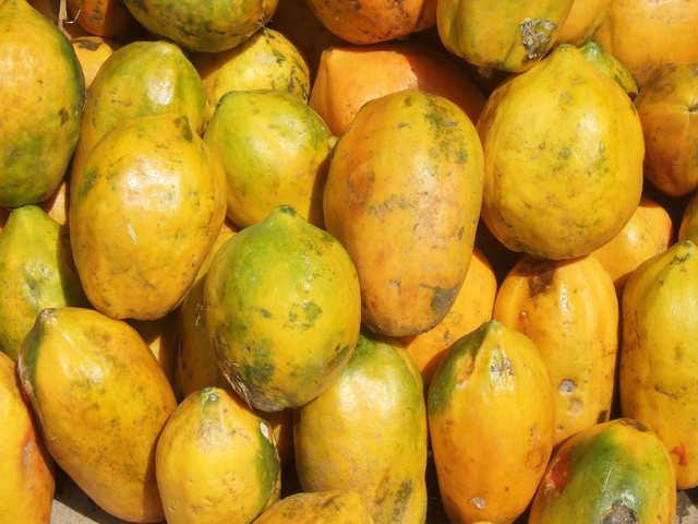 Papaya Papaya Secrets Of The Tropical Delight The Economic Times