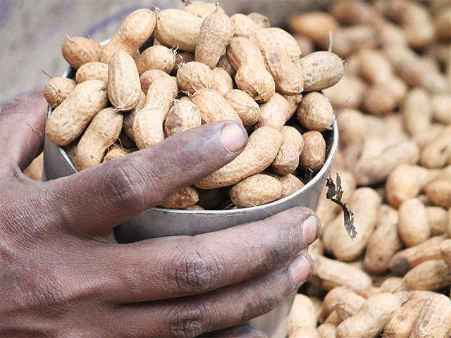 Here are the safety tips of harvesting and storing ground nuts - Telugu agriculture news