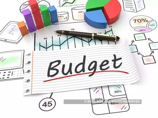 595c2c43c6e8f budget 2019  Some other items in Budget 2019 - The Economic Times