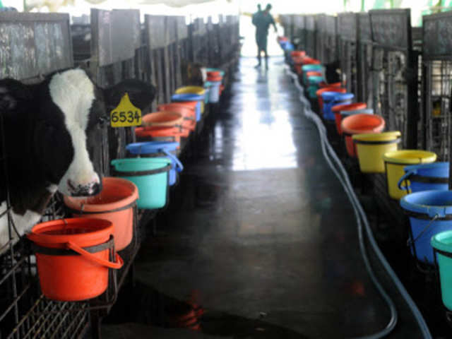 India S Best And Cleanest Dairy Farm How India Looks To