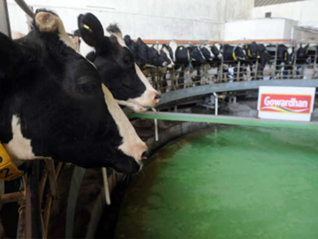 India S Best And Cleanest Dairy Farm How India Looks To Improve Its Dairy Sector The Economic Times