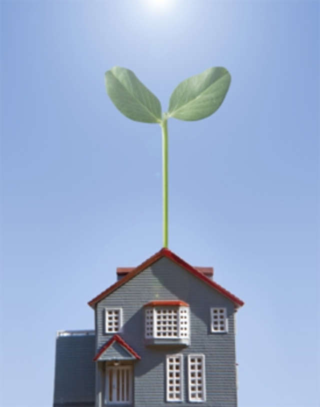 How green homes are giving owners ability to save on for Cheapest construction method