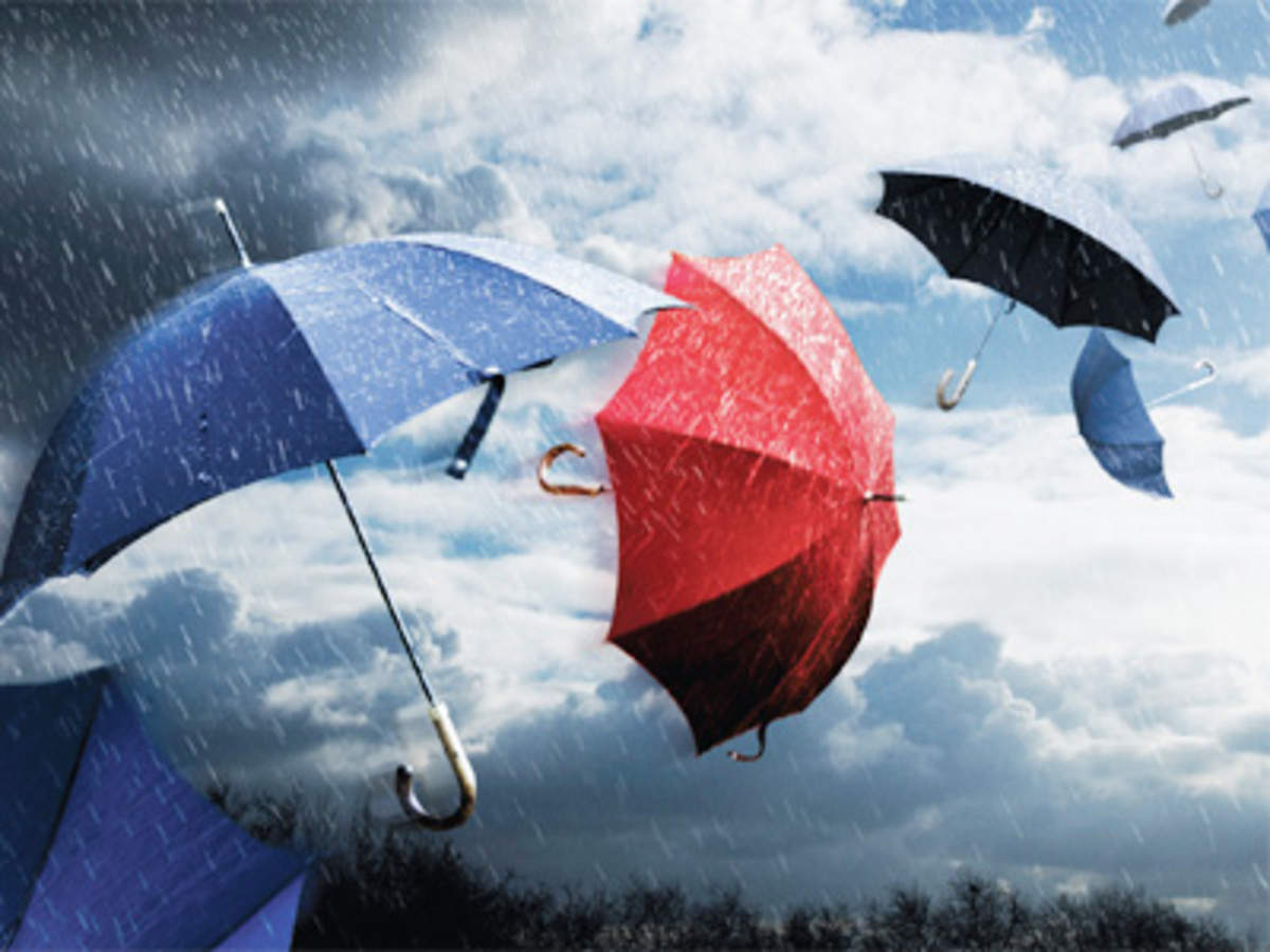 bb39803089d53 How the umbrella is getting a makeover with innovative ideas to woo  customers