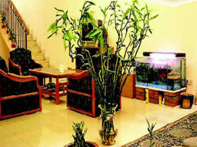 Feng Shui How To Ensure The Right Energy In A Building