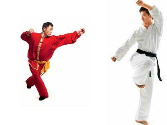 the description of the various types of martial arts Types of martial arts a most comprehensive coverage of the martial art world there are many different types of martial arts in the world, some are well known and some are not.
