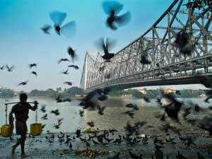 Man walking with pigeons flying under Howrah bridge.