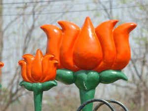 Bjp To Go It Alone In Assembly Polls The Economic Times