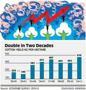 Bt cotton cultivation began in 2002, and its acreage shot up from 0.29 million hectares in 2002 to 9.4 million hectares in 2011-12.