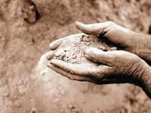 RCF to invest Rs 4,112 crore to expand urea capacity