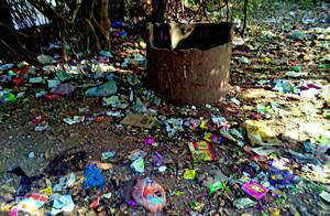 The four metros are major culprits in generating such waste, with Delhi producing 689.5 tonnes a day, followed by Chennai (429.4 tonnes), Kolkata (425.7 tonnes) and Mumbai (408.3 tonnes).