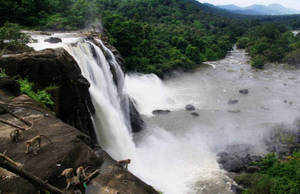Western Ghats: HLWG for prohibitory regime in 60,000 sq km area