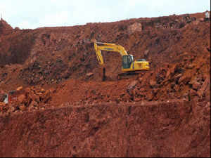 A mine owner said that there should be a referendum on whether the current Supreme Court-imposed ban on mining activity in Goa should continue.